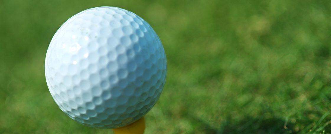 Mona Shores girls golf team wins OK Black Jamboree