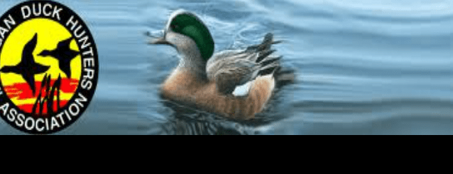Annual Waterfowl Day coming up next Saturday at new location