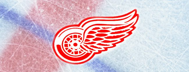 Former Detroit Red Wing Tomas Holmstrom reflects on his 15-year NHL career