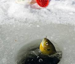 Are you prepared for ice fishing if, and only if, the weather cooperates?