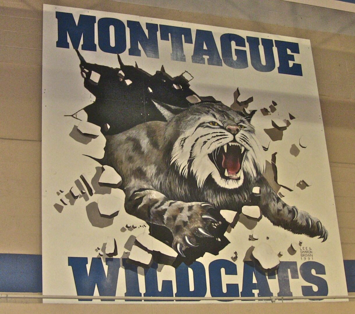Montague wraps up WMC title with victory over Mason County Central