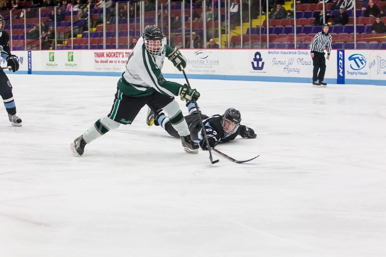 Mona Shores vs. Reeths-Puffer hockey (Photo gallery)