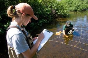 Volunteers can help protect southwest Michigan state parks and recreation areas