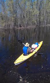 Paddle the Muskegon River with a DNR biologist July 27