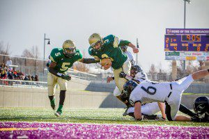 MCC junior Nicholas Holt dives for the end zone last weekend versus Coleman. Photo/Tim Reilly