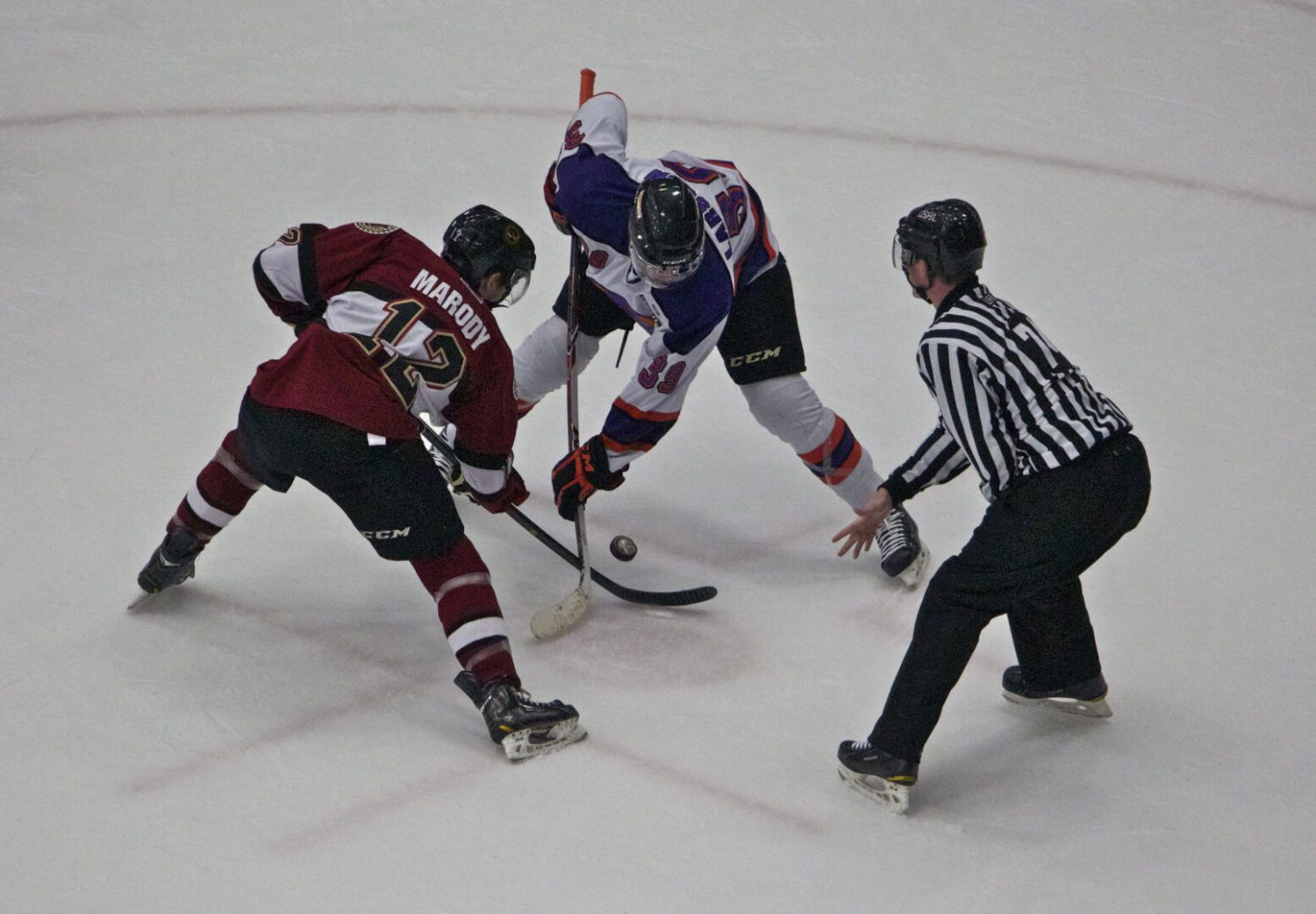 Streaking Lumberjacks win fifth straight with a 5-1 win over Youngstown