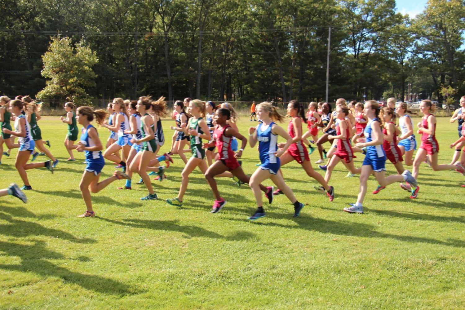 [VIDEO] Highlights from the GMAA City Cross Country Championships