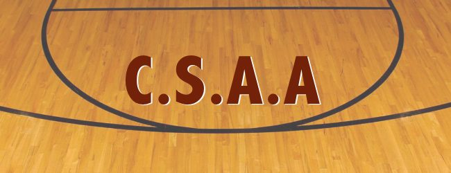 CSAA hoops 1/16: Holton boys get their first win of the season, 54-48 over Morley Stanwood