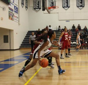 Iyana Brown dribbles off the baseline for Fruitport. Photo/Jason Goorman