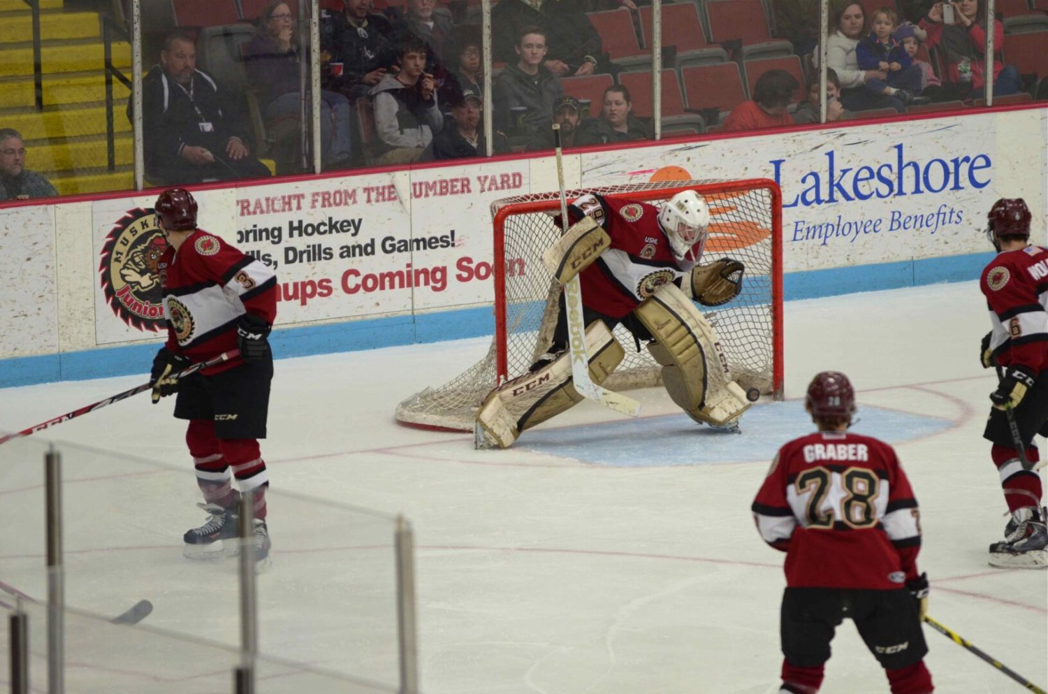Lumberjacks set team record for wins, clinch a playoff spot, with an impressive 5-1 win over Des Moines [VIDEO]