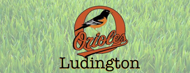 Ludington holds off Montague in close girls golf contest