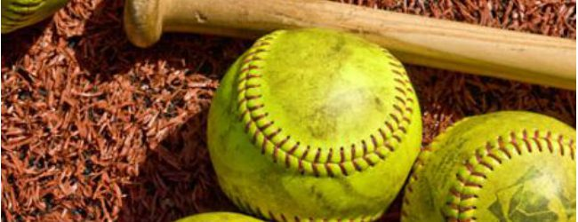 Softball roundup: Oakridge pounds Mason County Central in a doubleheader sweep