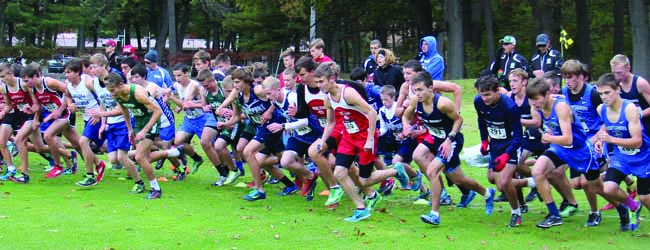 Whitehall girls win a regional cross country title; Walkerville's Emily Merten wins an individual championship