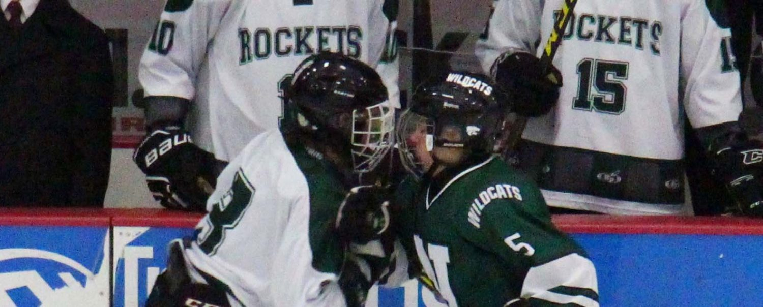 Nate Sullivan's late goal allows Reeths-Puffer hockey team to salvage a 4-4 tie with visiting Novi