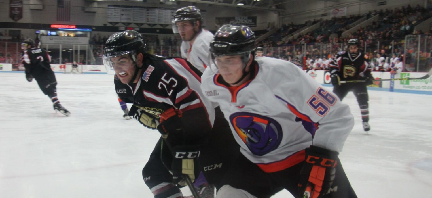 Lumberjacks lose a two-goal lead, fall to Youngstown 4-3 in an overtime shootout