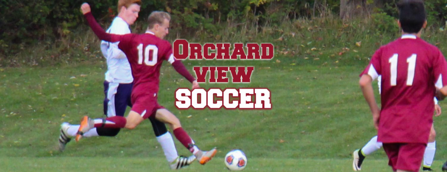 Orchard View gives up three quick goals, loses to Paw Paw in soccer regionals