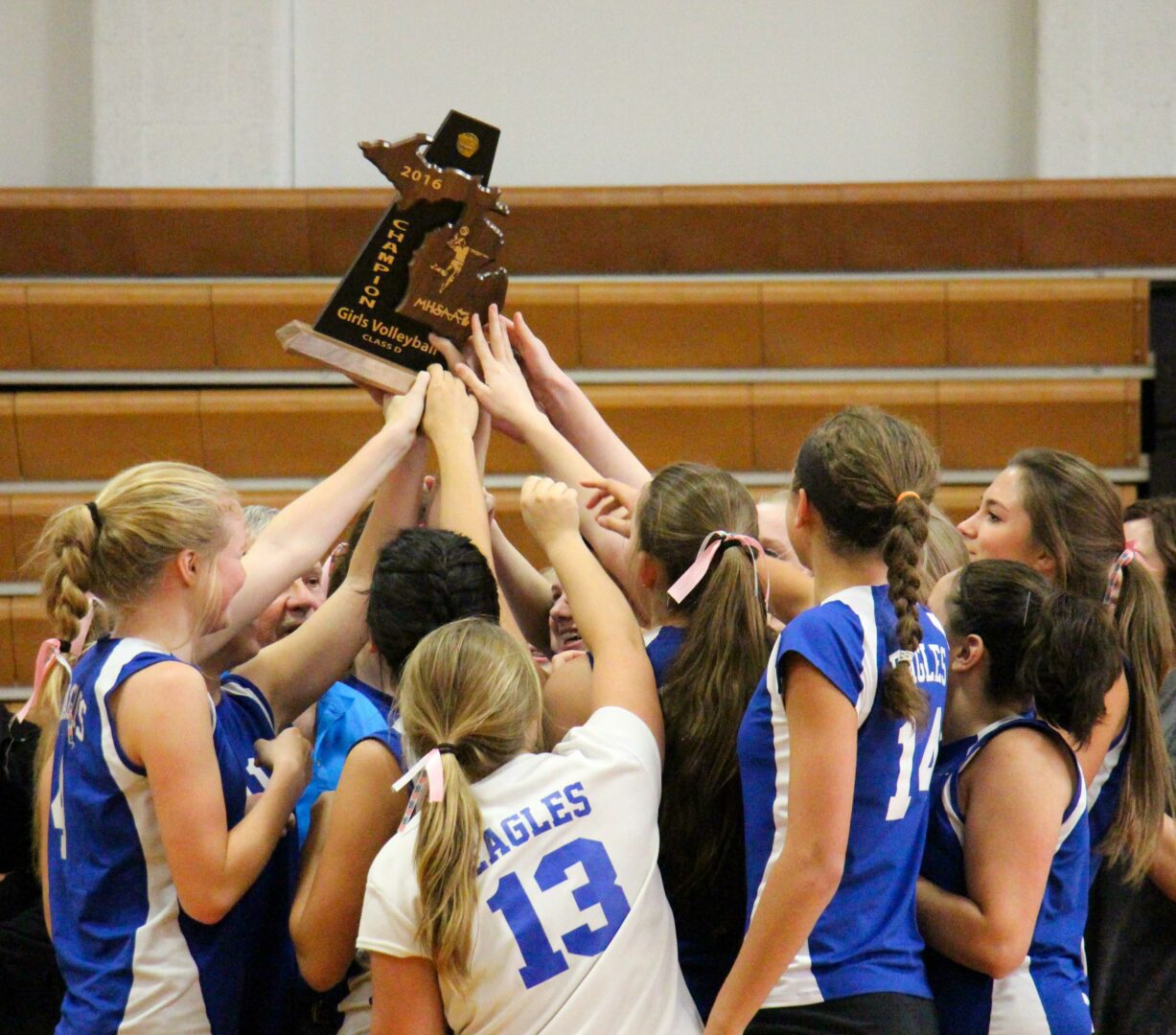 Updated sites, times, matchups for this week's varsity volleyball Division 1-4 district tournaments