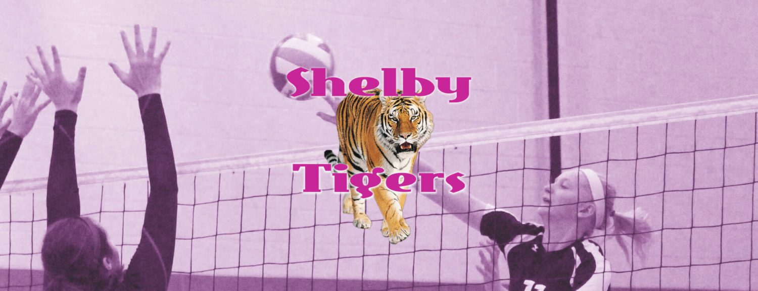 Shelby volleyball team dominates Mason County Central for conference victory