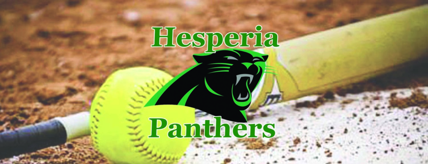 Hesperia softball team wins Division 3 district title, defeats Mason County Central