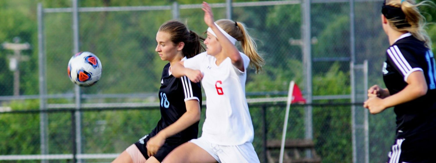Spring Lake allows goal with 23 seconds left, loses D2 regional soccer finals 1-0