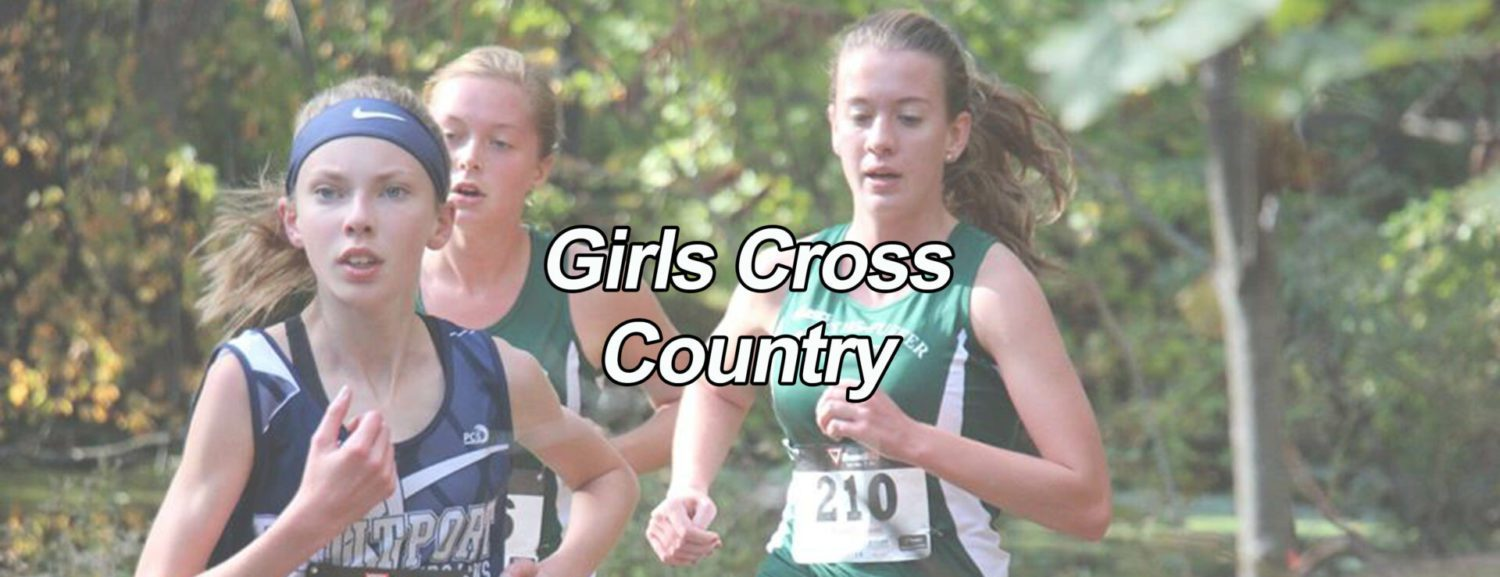 Hart and Fremont cross county teams have strong day at Portage Invitational
