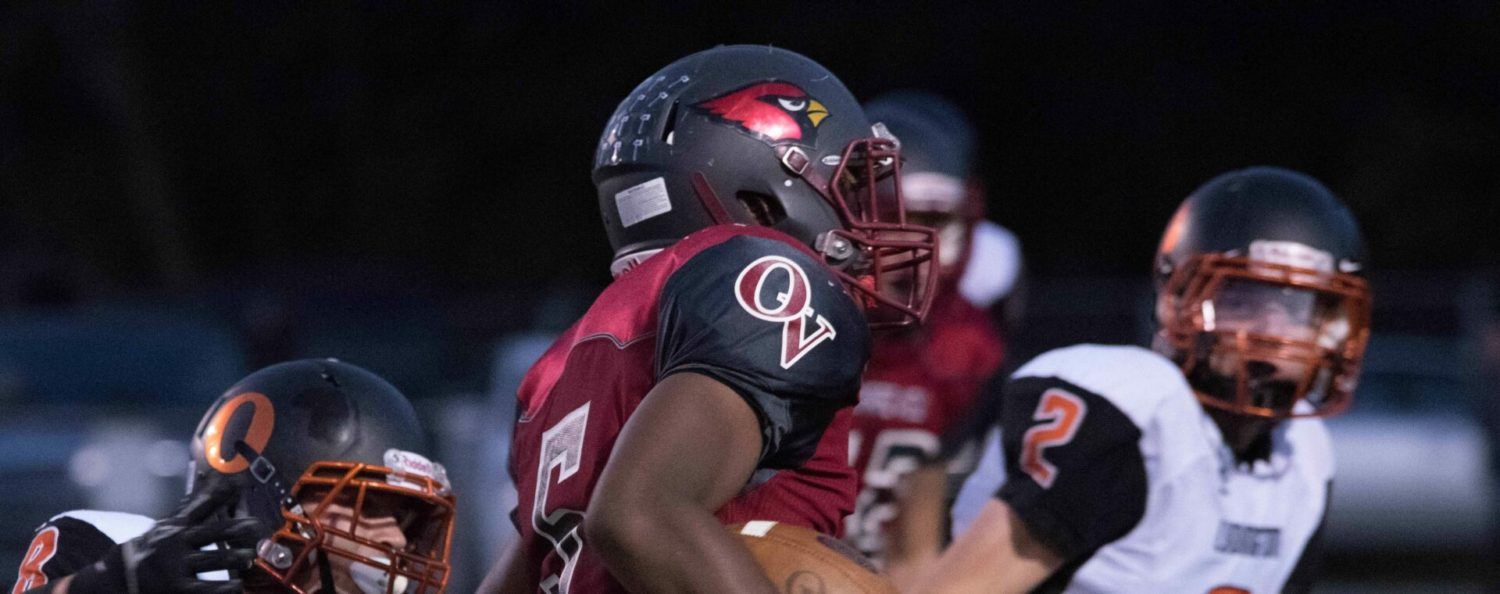 Orchard View uses ground attack to roll past Ludington in Lakes 8 action