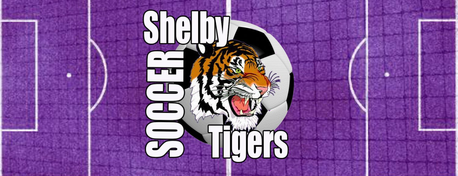 Joseph Hayes' goal in first overtime gives Shelby soccer a 2-1 win over Oakridge in D3 regionals