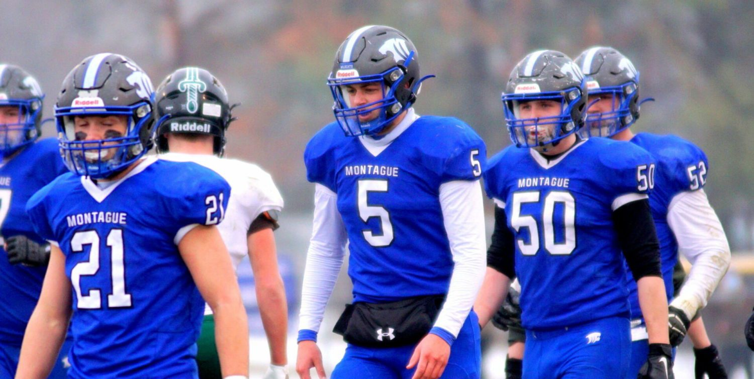 The monkey is off Montague's back: Wildcats avenge last year's state semifinal loss with a 49-14 thrashing of Grayling